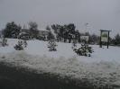 Nevada 19 i 20 de febrer de 2003_7