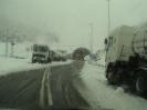 Nevada 19 i 20 de febrer de 2003