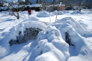 Nevada del 7 al 10 de gener de 2010_61